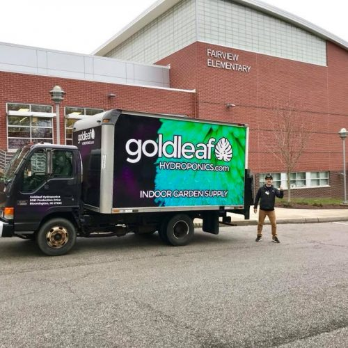 Goldleaf at Fairview Elementary