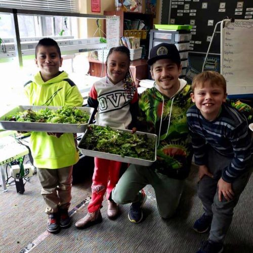 Hydroponics-in-the-Classroom