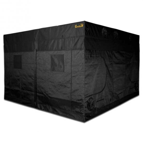 Gorilla-Grow-Tent-10x10